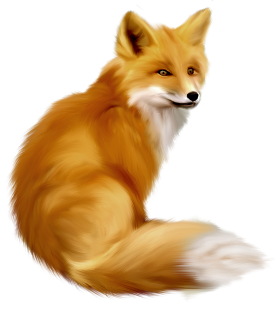 Fox clipart png. Painted gallery yopriceville high
