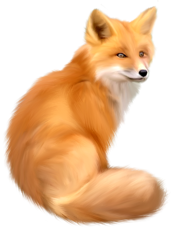 Fox png. Hd freepngdownload com