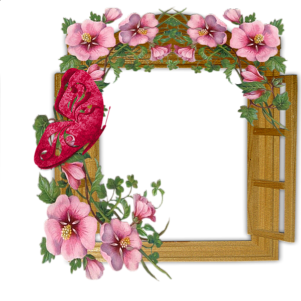 Wooden winow with flowers. Frame clipart butterfly image transparent stock