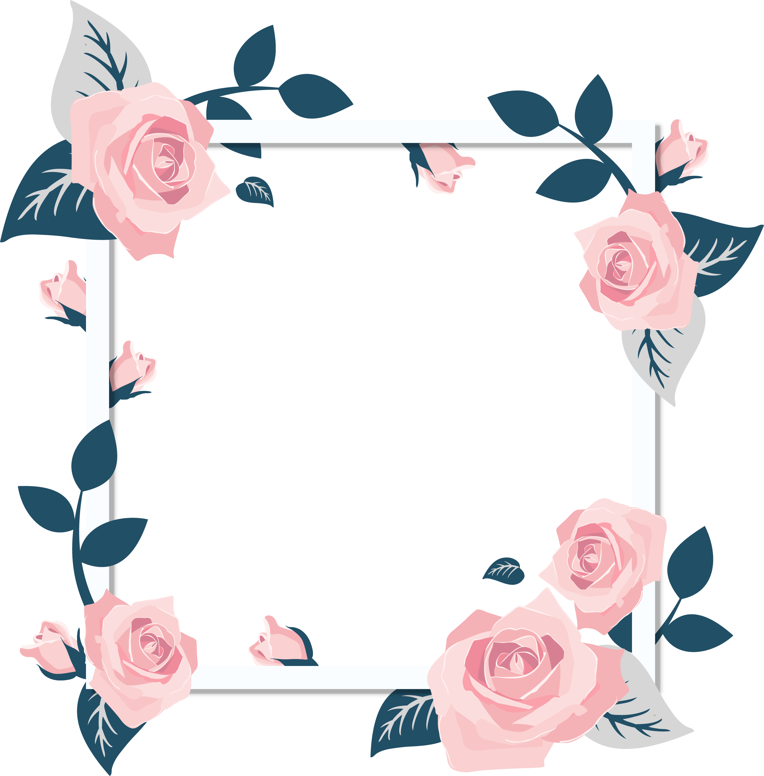 Frame photo png. Rose images a flower