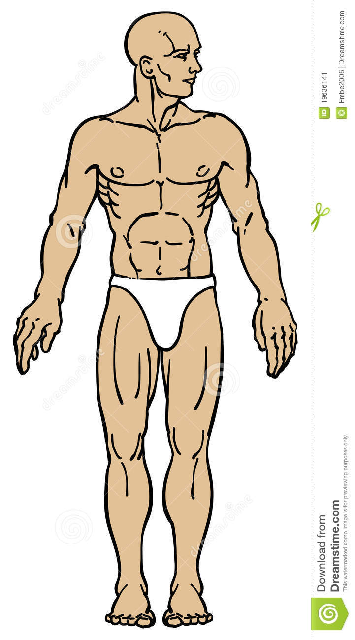 Frankenstein clipart full body. Typegoodies me male anatomy