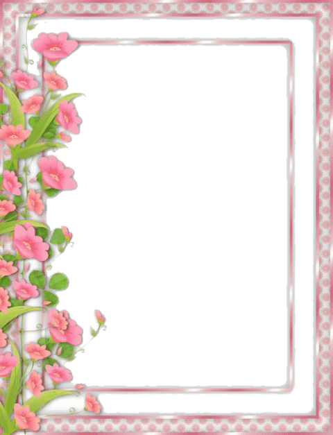 Flowers free images toppng. Photo borders png jpg free library