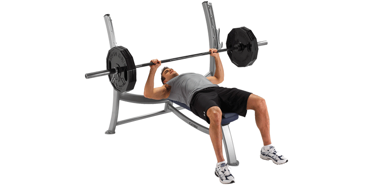 Free chest png. Exercise bench transparent images