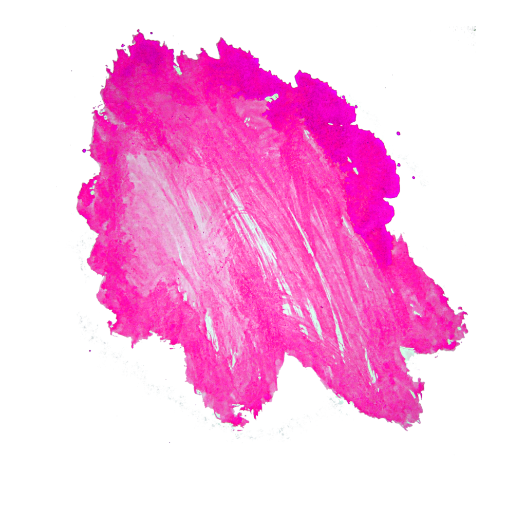 Free coffee stain png. Pink peoplepng com