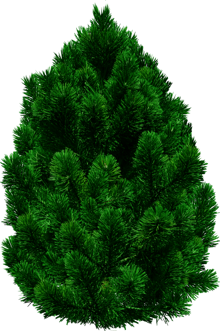 Tree image free download. Forest pine trees png clip black and white stock