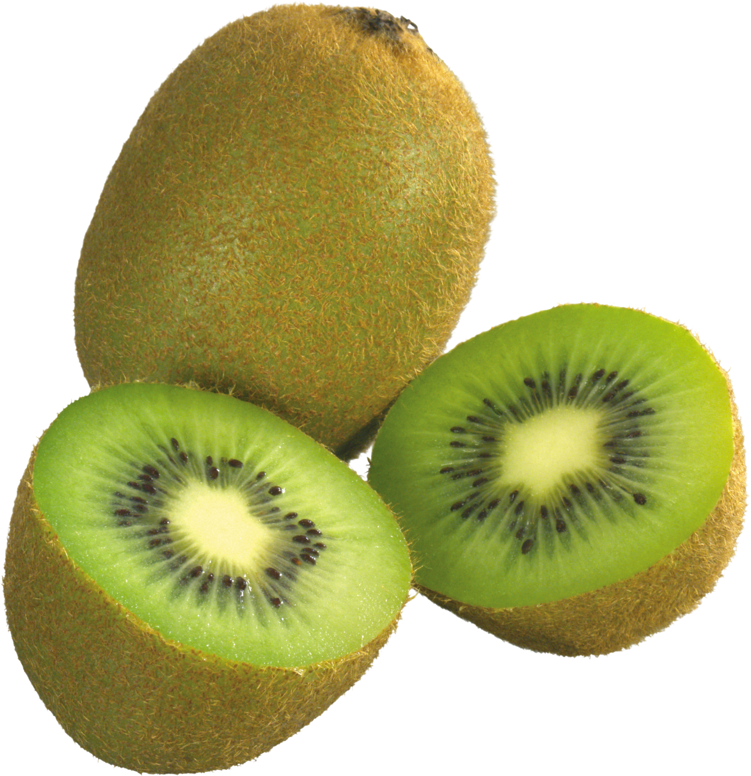Free download png image. Kiwi fruit pictures