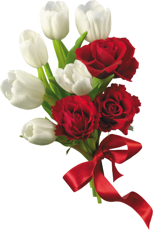 Free flora bouquet png coral navy blue. White tulips and red