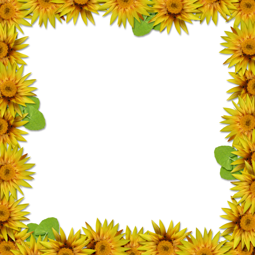 Free photo png frames overlayment. Flower frame overlay by