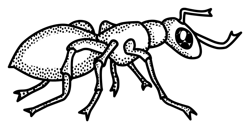 Free png clipart ant black and white. Line drawing at getdrawings