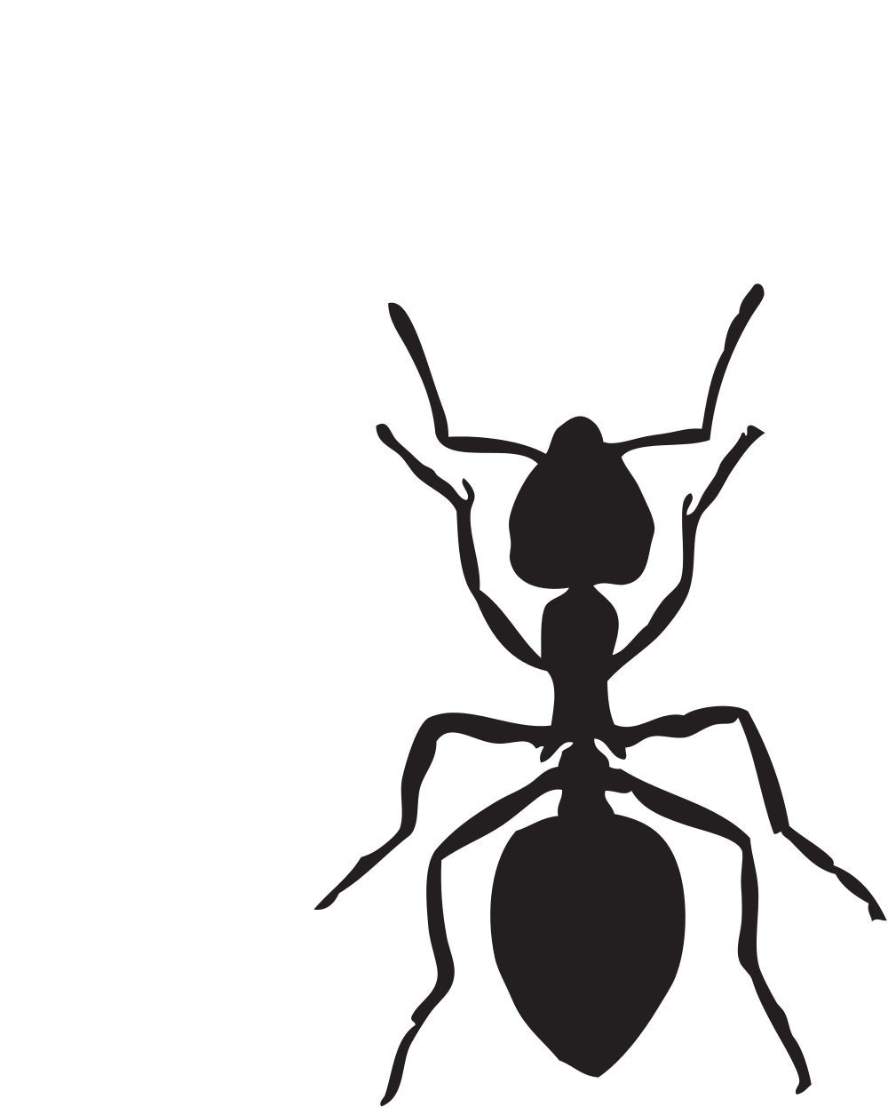 Free png clipart ant black and white. File svg wikimedia commons