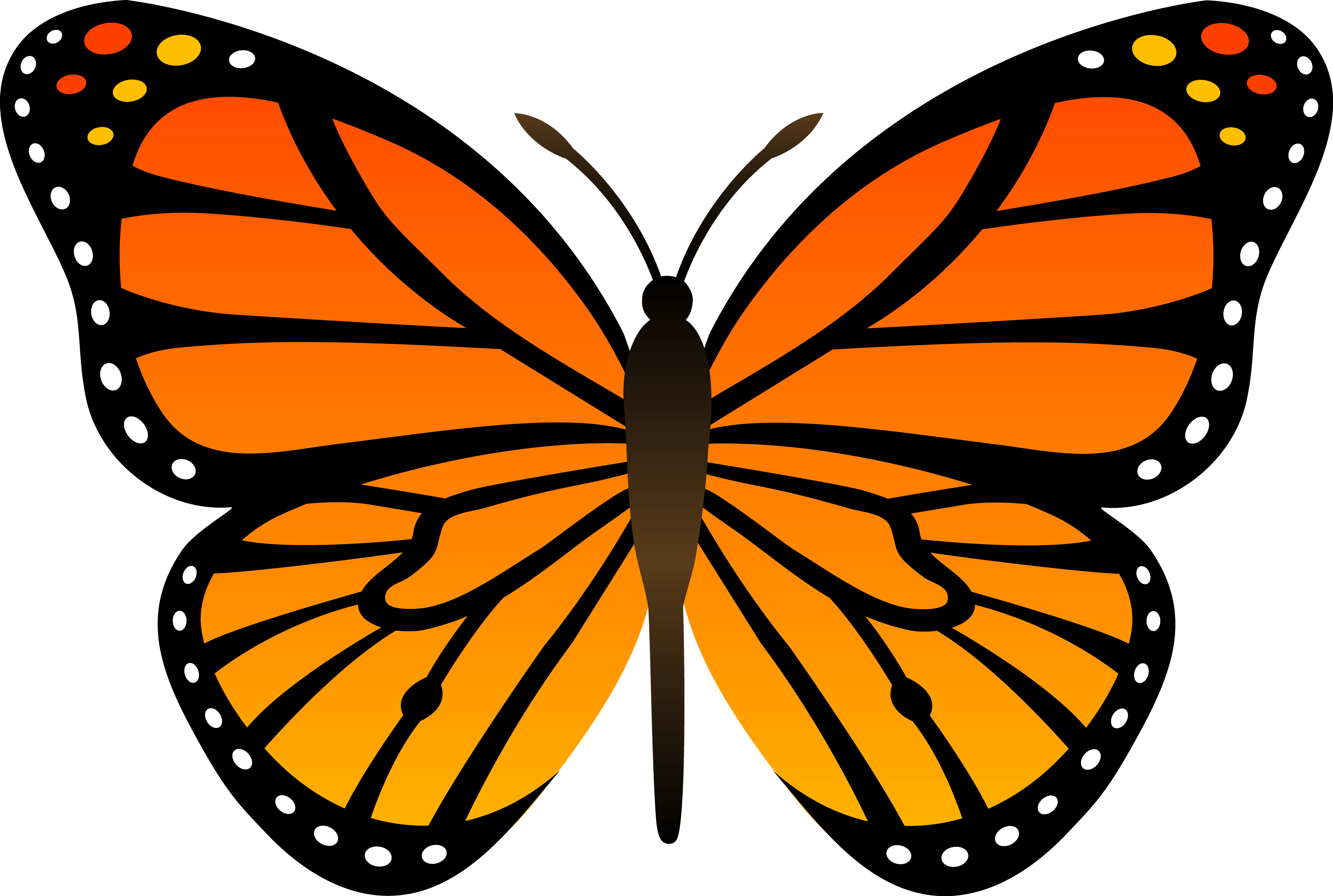 Butterfly clipart png. Free images icard ibaldo