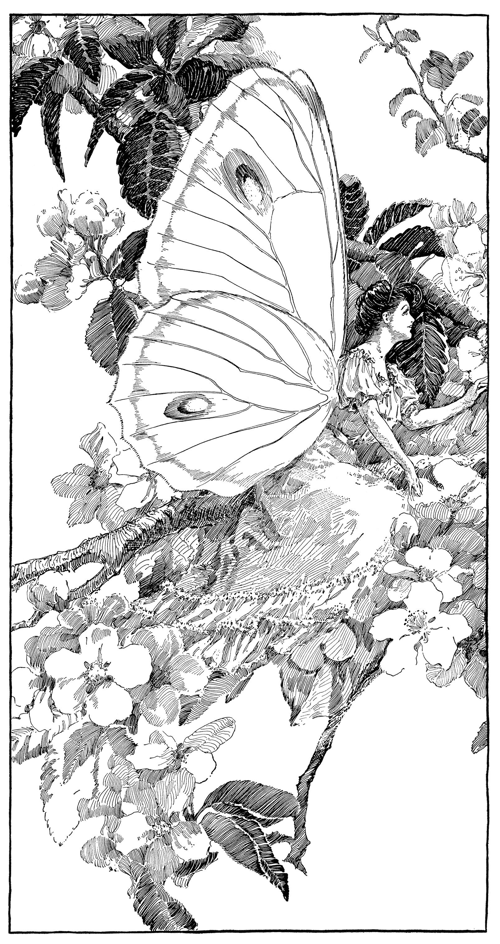 Vintage fairy graphics digital. Free printable clipart butterfly graphic black and white
