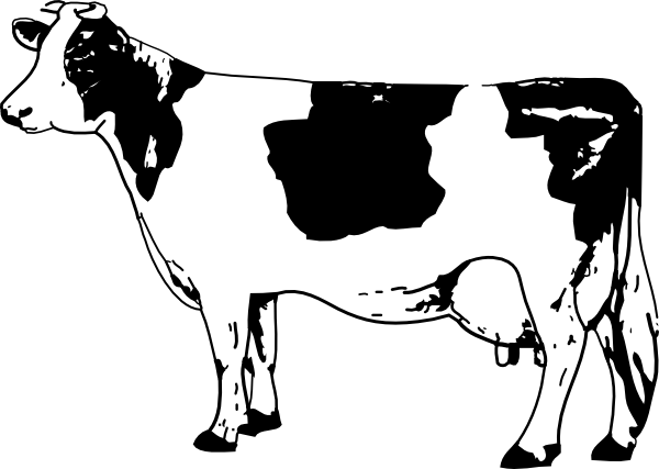 Drawing clip. Free line drawings cow