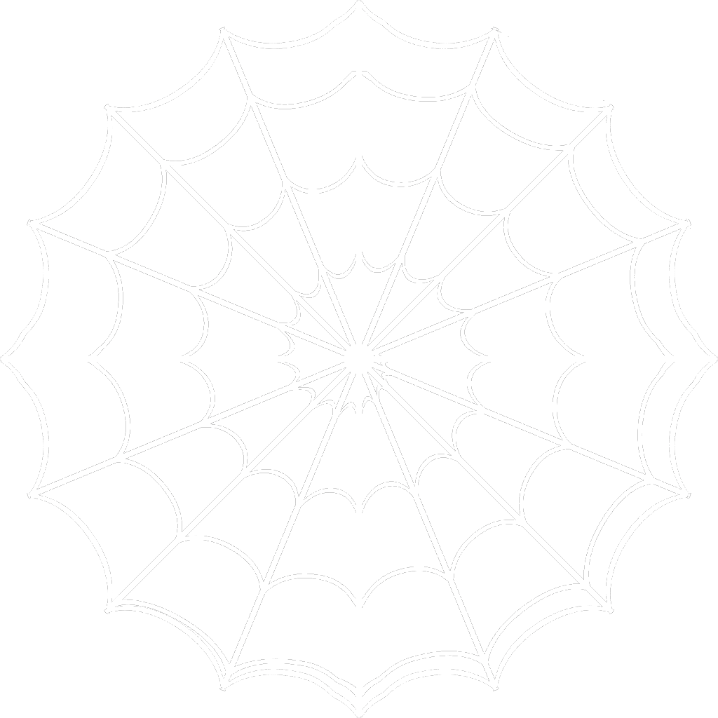 Free spider web png. White icons and backgrounds