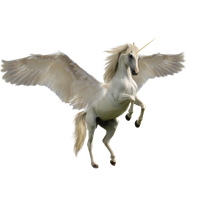 Unicorn transparent png. Download free photo images