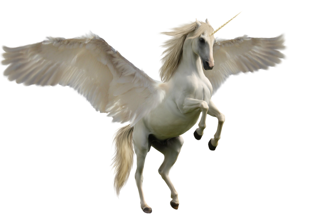 unicorns transparent pegasus