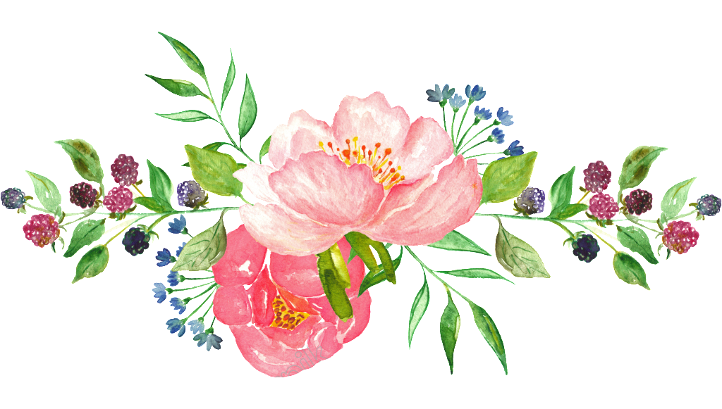 Watercolor flowers png. Hd photos free download