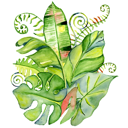 Free watercolor tropical leaves png. Backgrounds images download hand