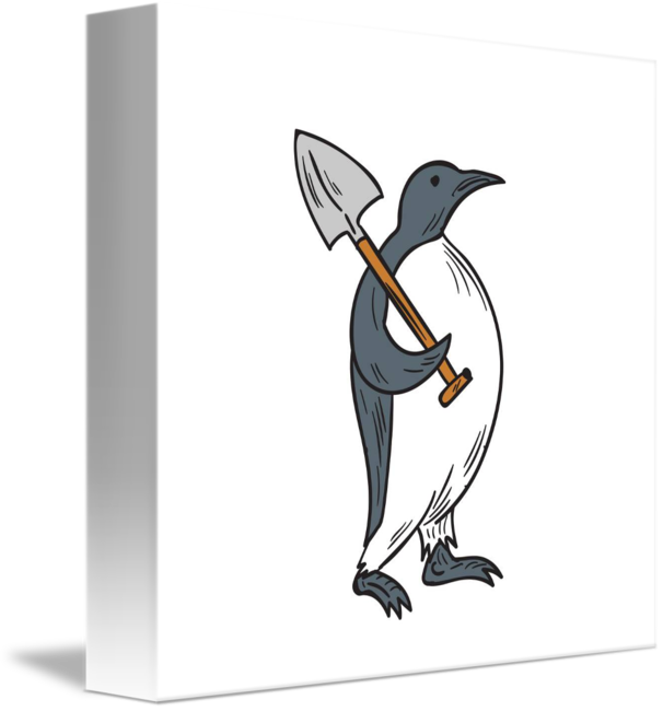 drawing penguins emperor penguin