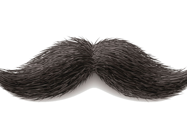 French moustache png. Cliparts free download clip