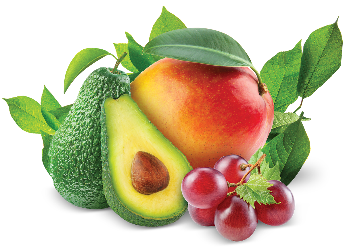 Fresh vegetables png. Fruits cpx per
