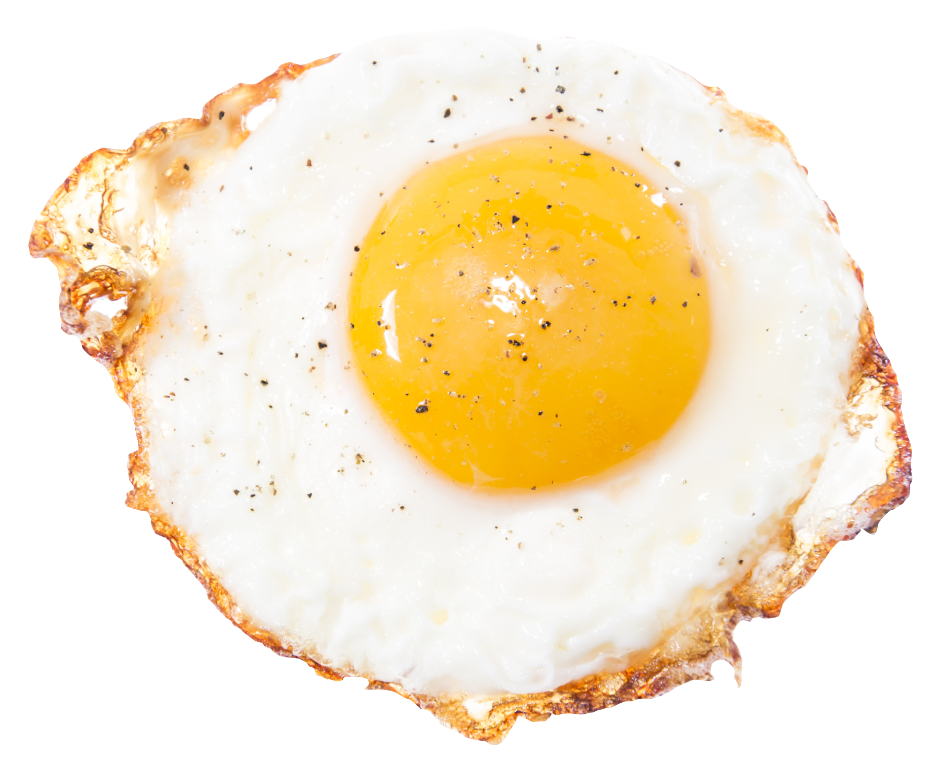 Eggs vector salted egg. Fried png hd transparent