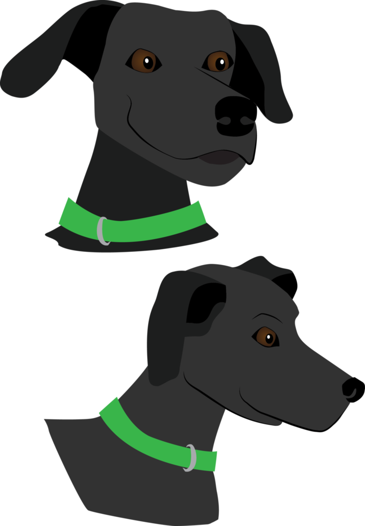 Frisbee vector dog. The by handstandgraphics on
