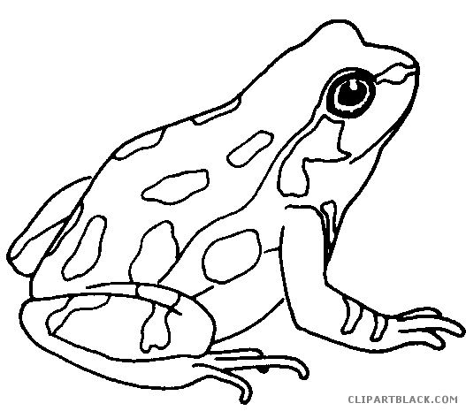 Frog clipart black and white. Cute page of clipartblack