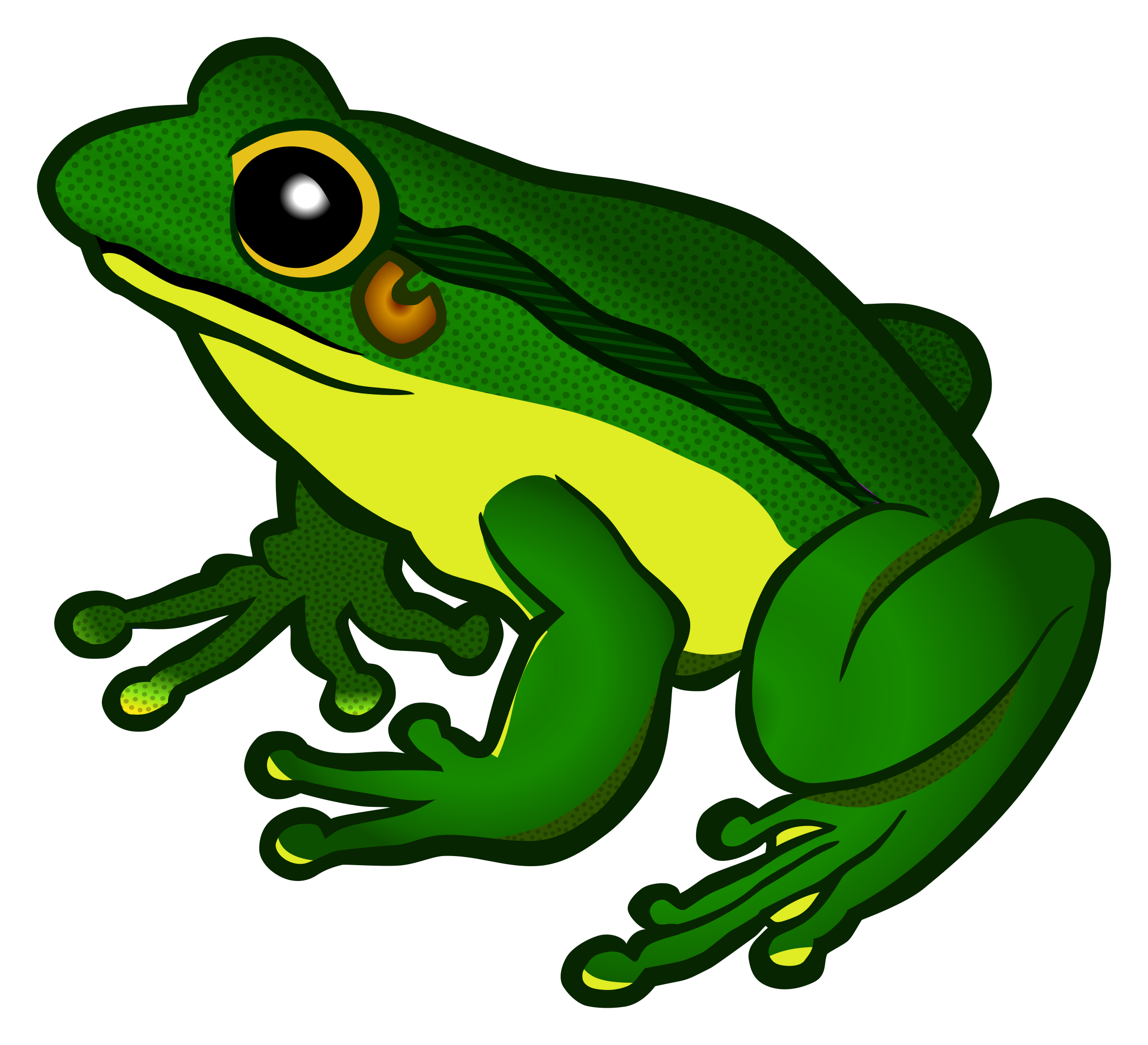 cool frog png