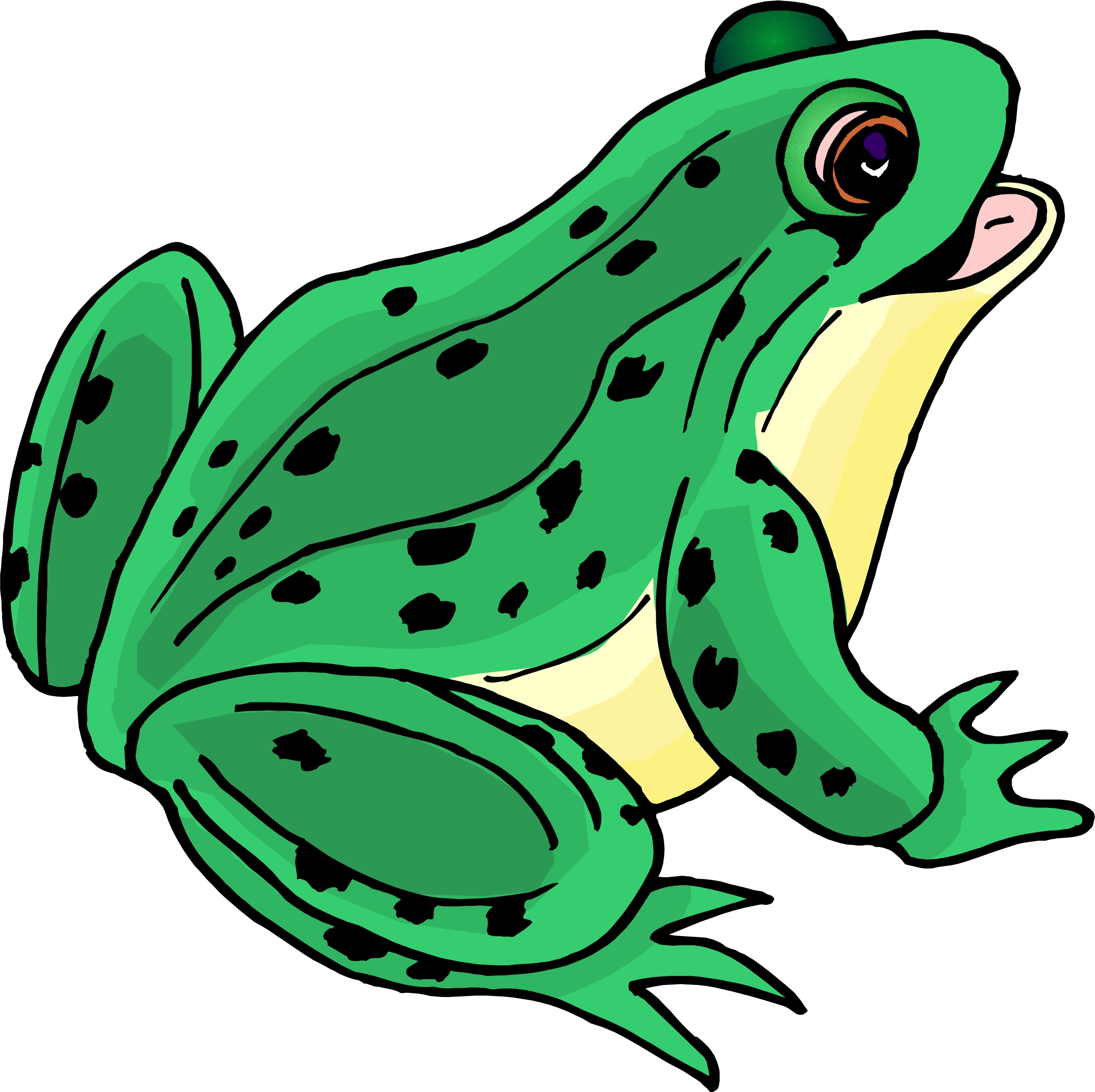 Frogs clipart green frog. Girl back to cartoon