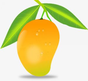 Fruit clipart mango. Png yellow with green