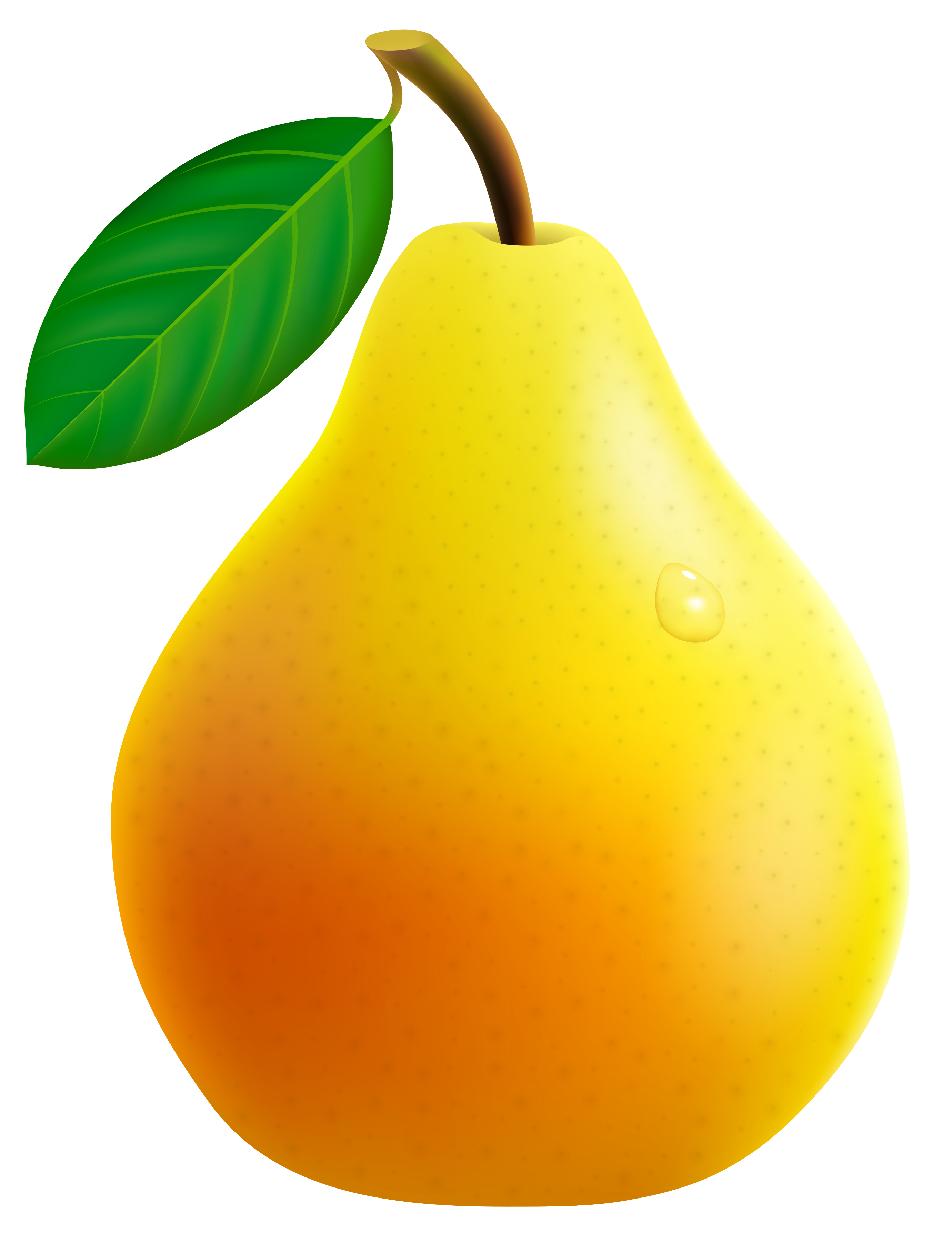 Fruit clipart pear. Yellow png vector image