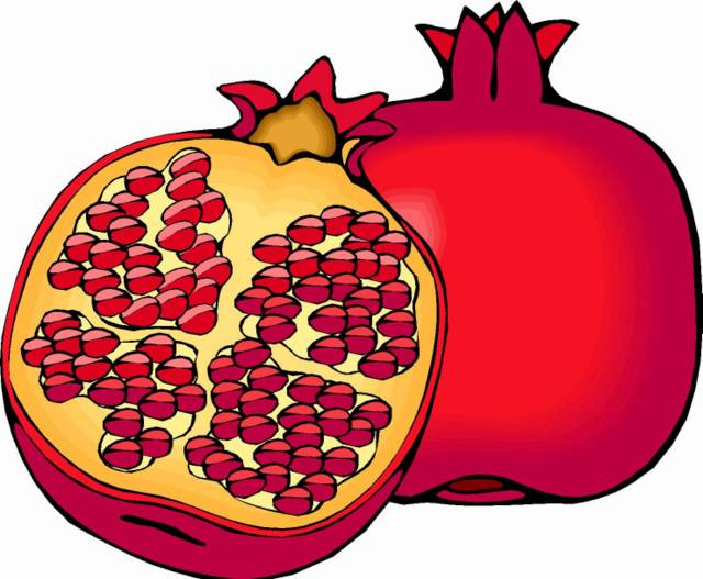 Fruit clipart pomegranate.