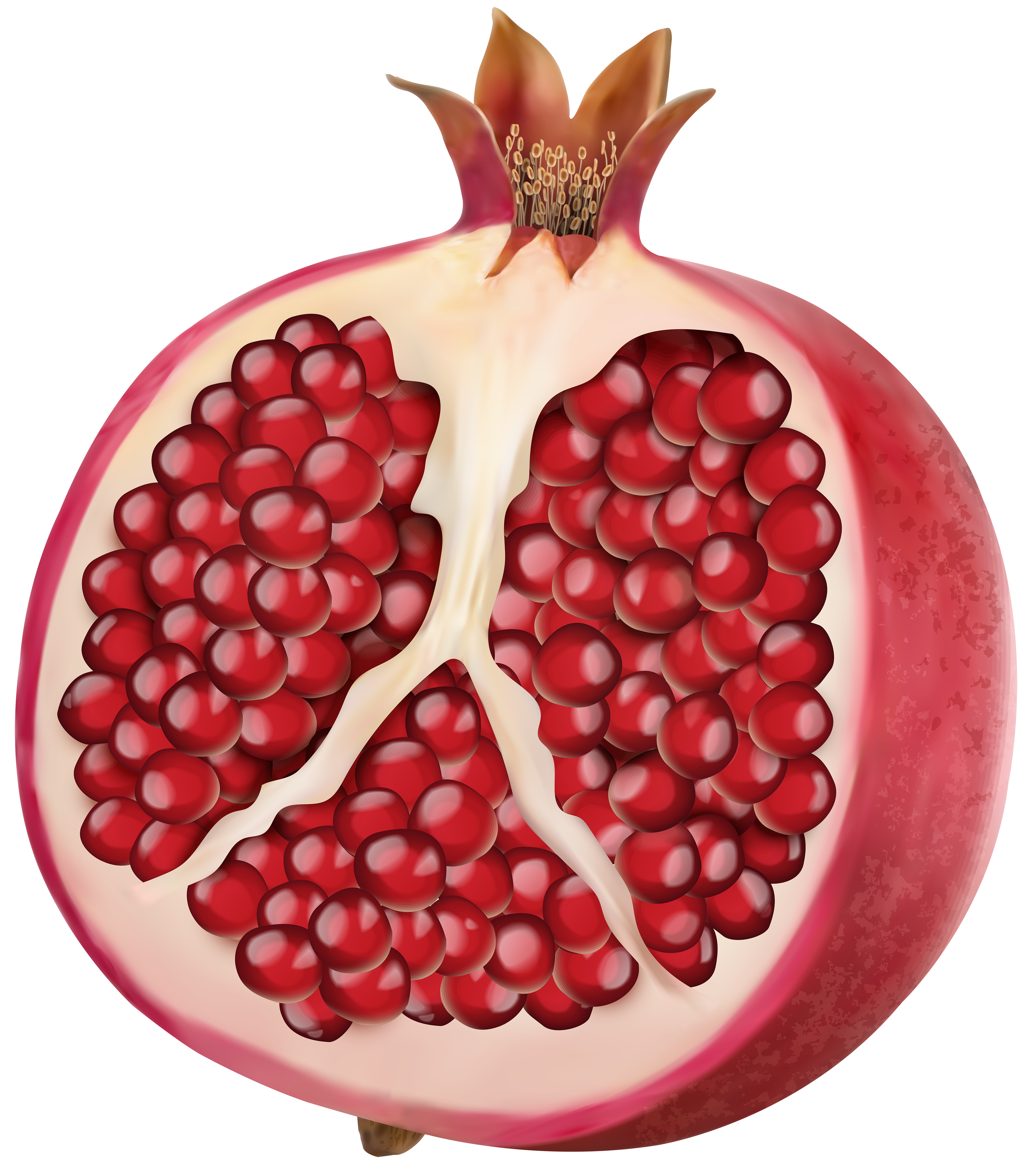 Gold pomegranate. Png clip art image