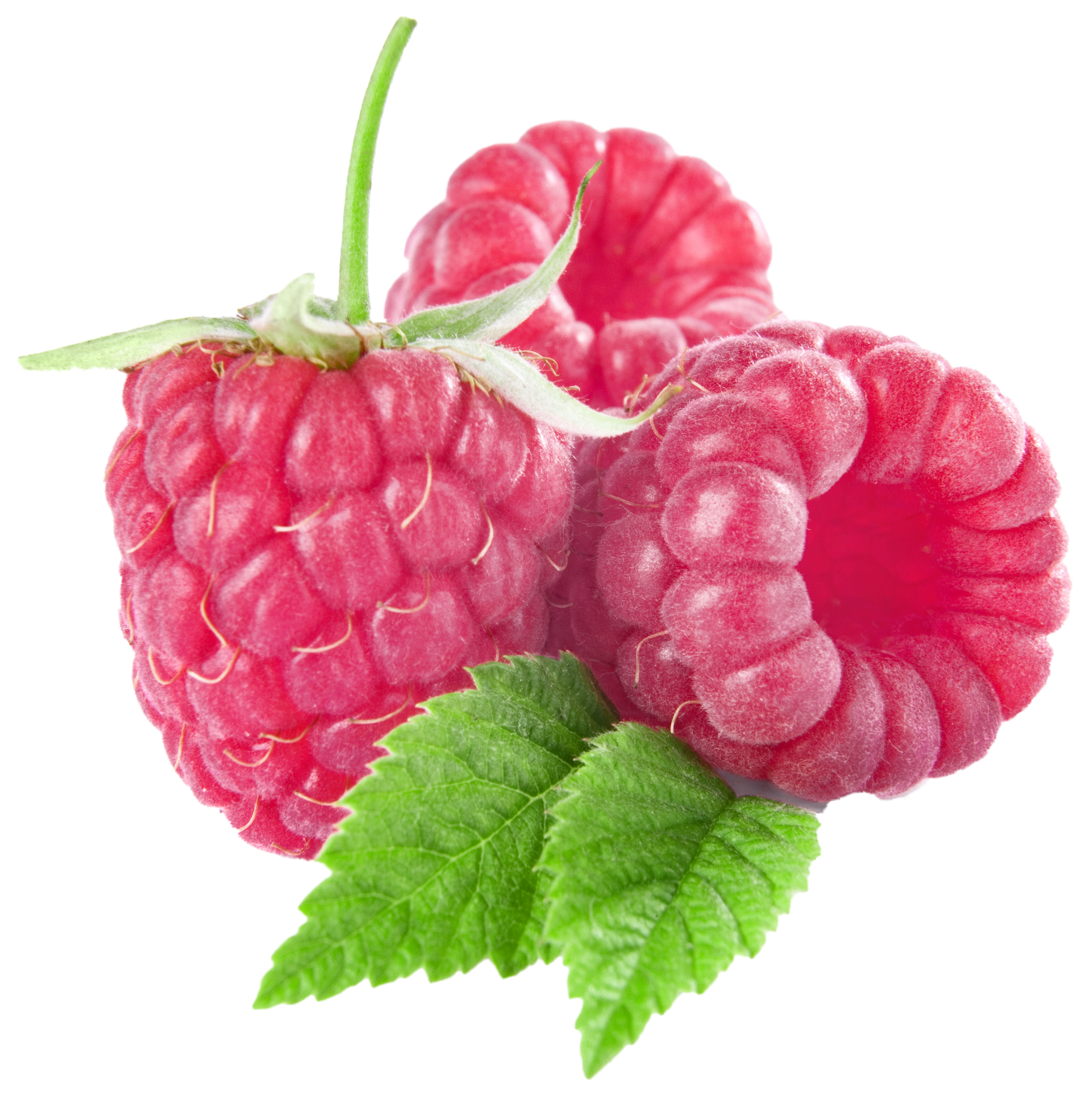 Fruit clipart raspberry. Large raspberries png gallery