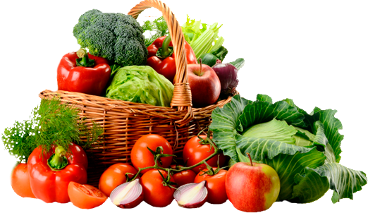 Vegetables herbs spices al. Fruits and veggies png picture freeuse