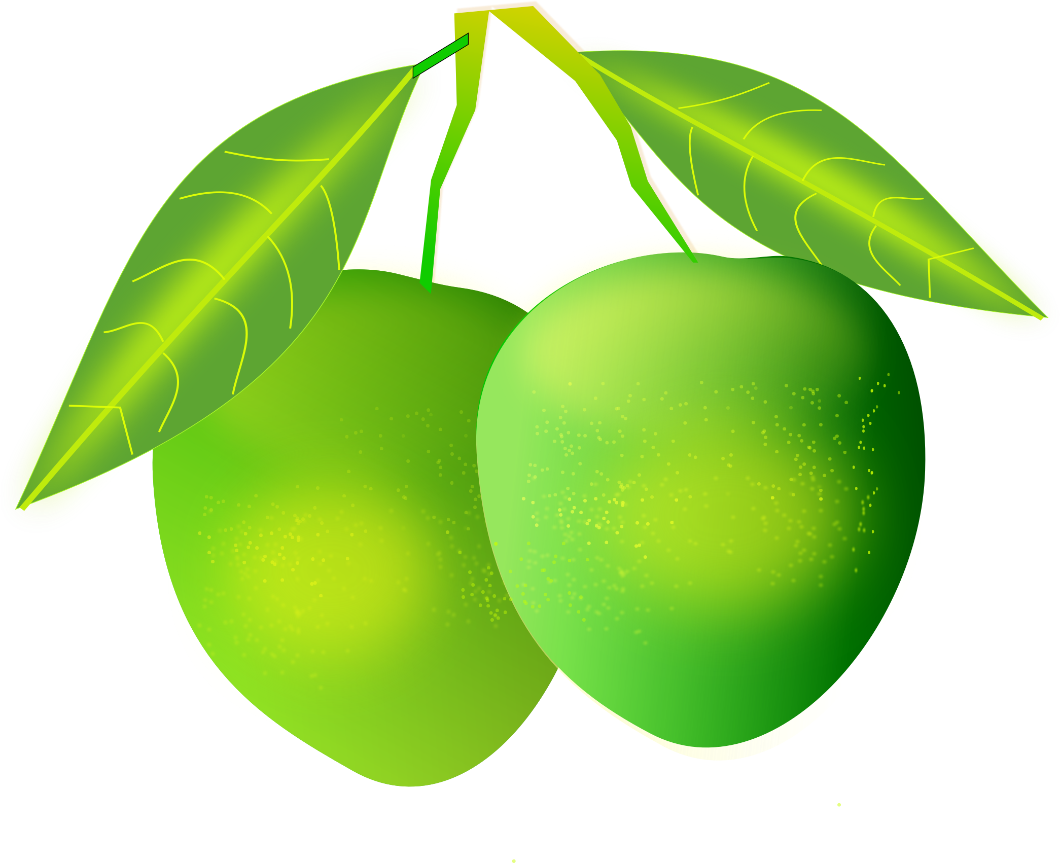 Mango vector png. Images free download image