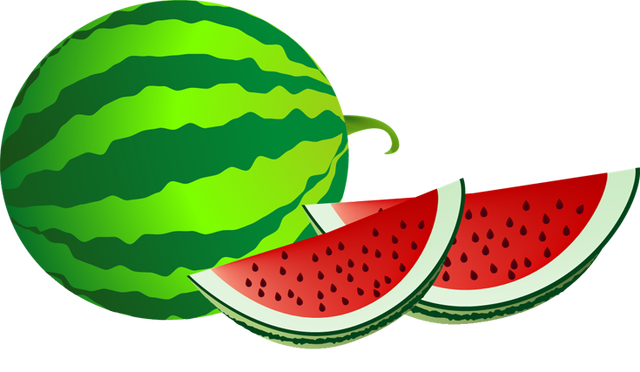 Fruits transparent summer. Web design development misc