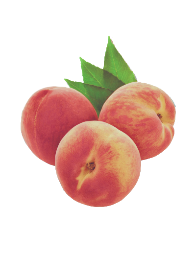 Fruits transparent aesthetic. Peach vaporwave tumblr cute