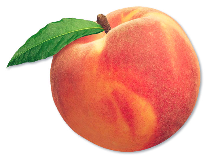 White nectarine. Peach fruit aesthetic freetoedit
