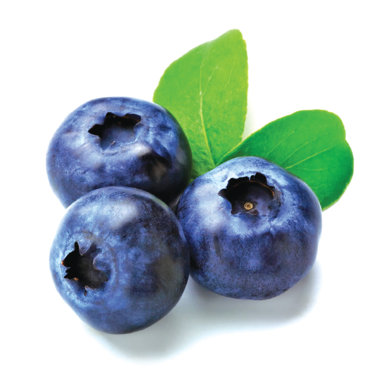 Fruits transparent blueberry. Products