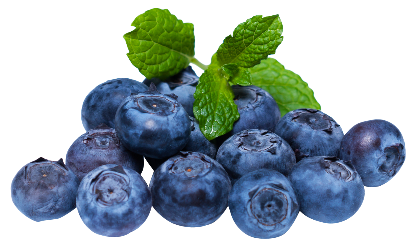 Fruits transparent blueberry. With leaf png image