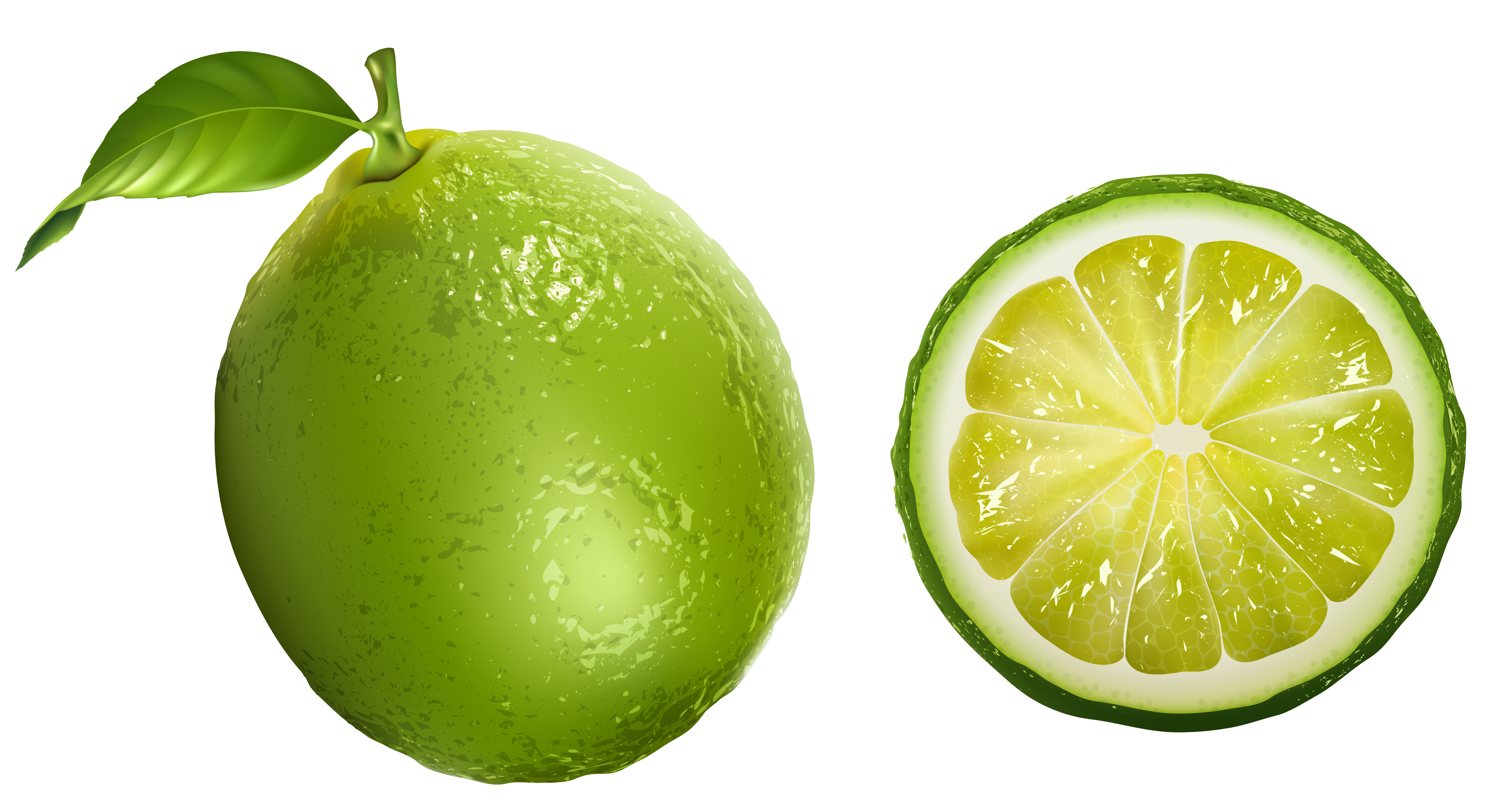 Fruits transparent lime. Png clipart picture gallery