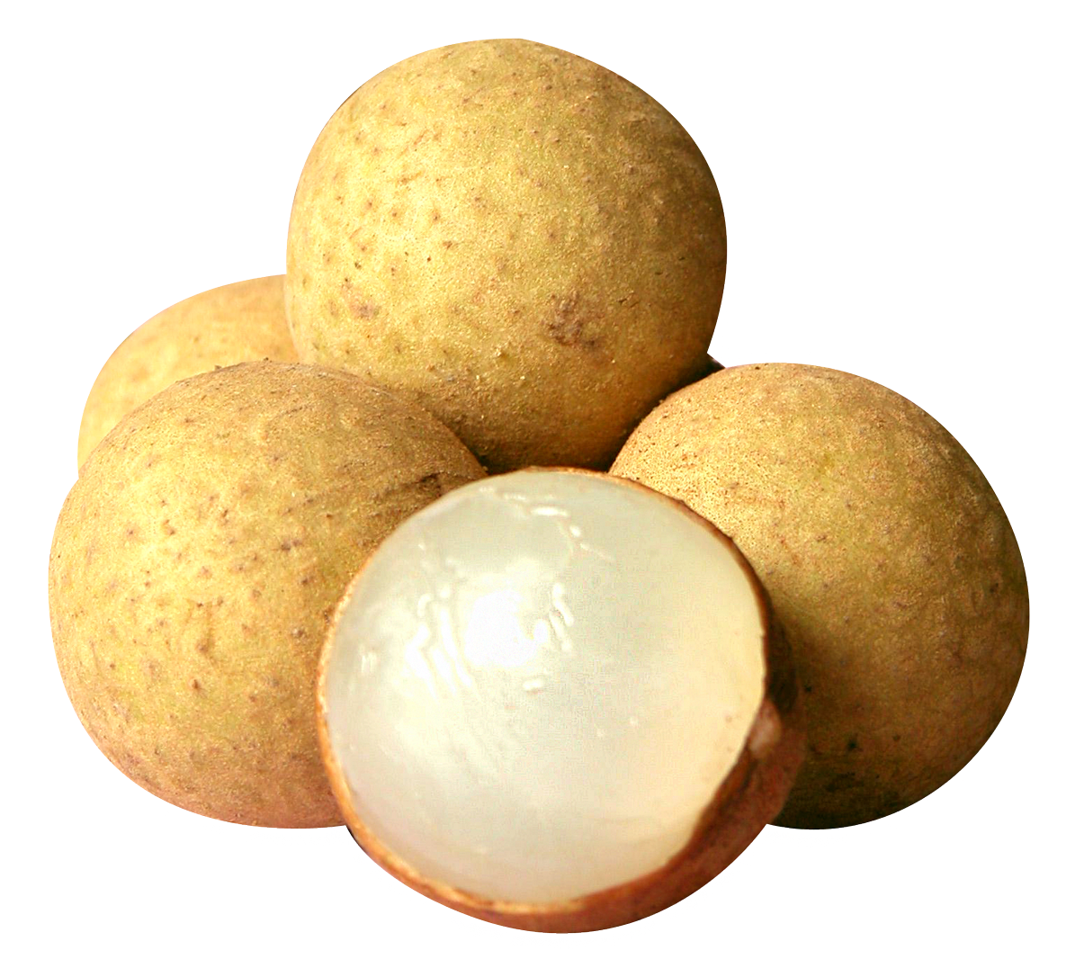 Fruits transparent longan. Png image purepng free