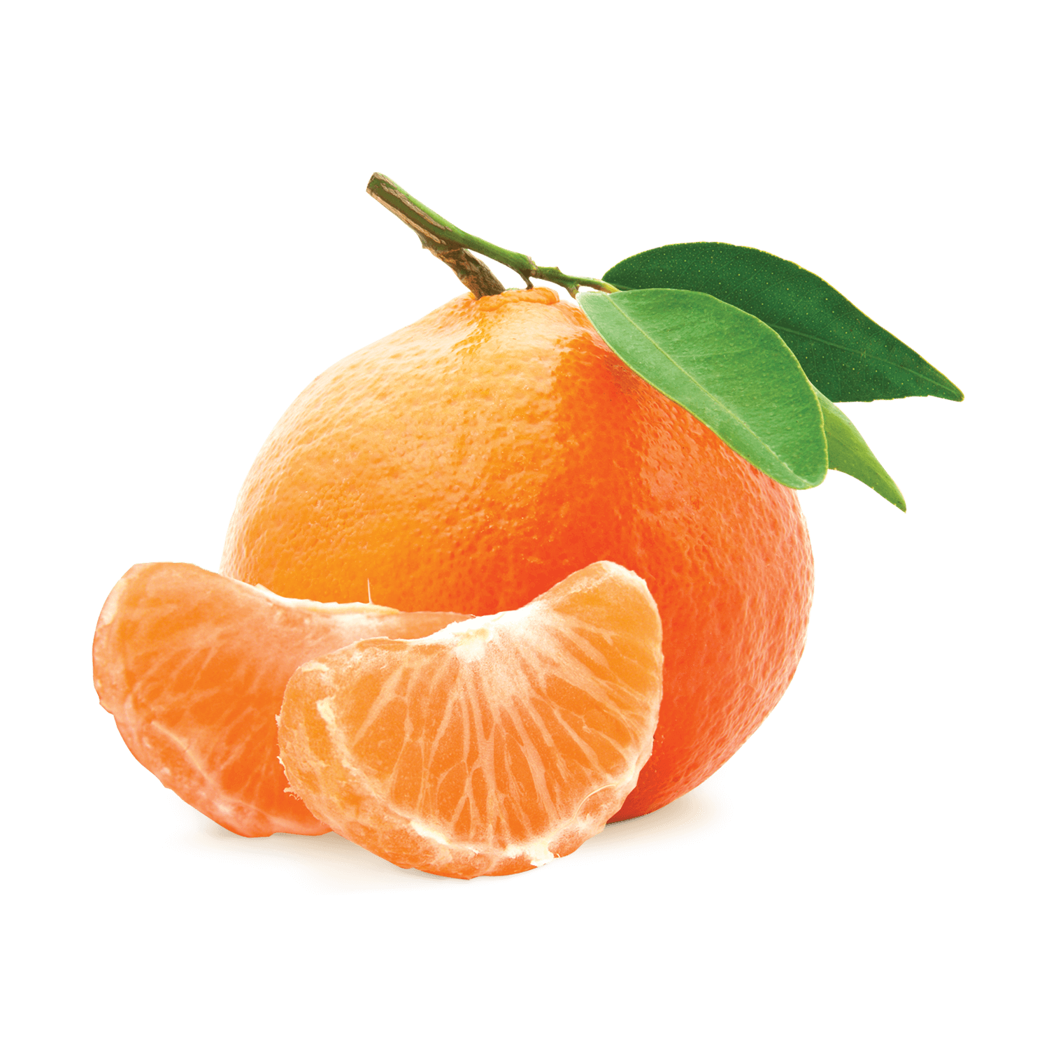 Elongated mandarin