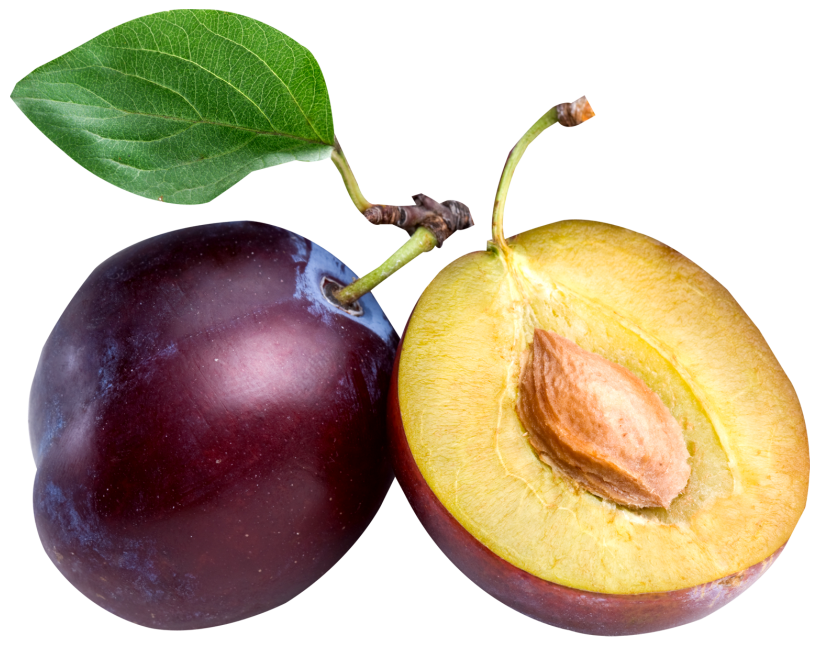 Fruits transparent plum. Large png clipart gallery