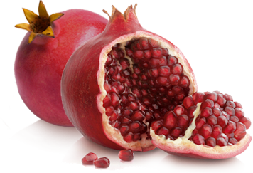 pomegranate transparent wonderful