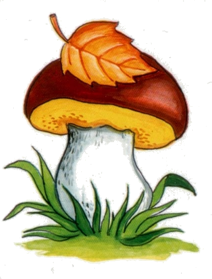 Fungus drawing autumn. Pin by happy letters