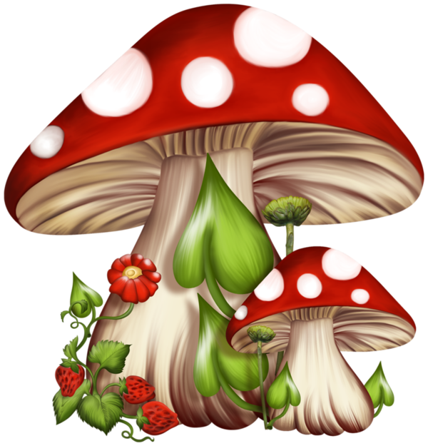 Fungus drawing fantasy. Autunno cornici materiale in