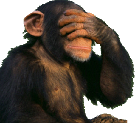 Funny monkey png. Format images of free